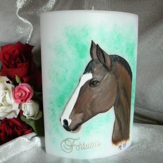 Wachsbild Pferd Fortuna