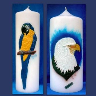 Wachsbild Papagei Seeadler