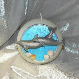 Delfinpaar schwimmend